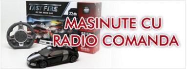 Masinute cu radiocomanda